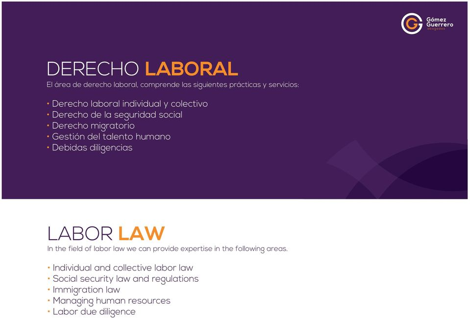 diligencias LABOR LAW In the field of labor law we can provide expertise in the following areas.