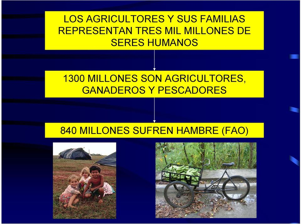 HUMANOS 1300 MILLONES SON AGRICULTORES,