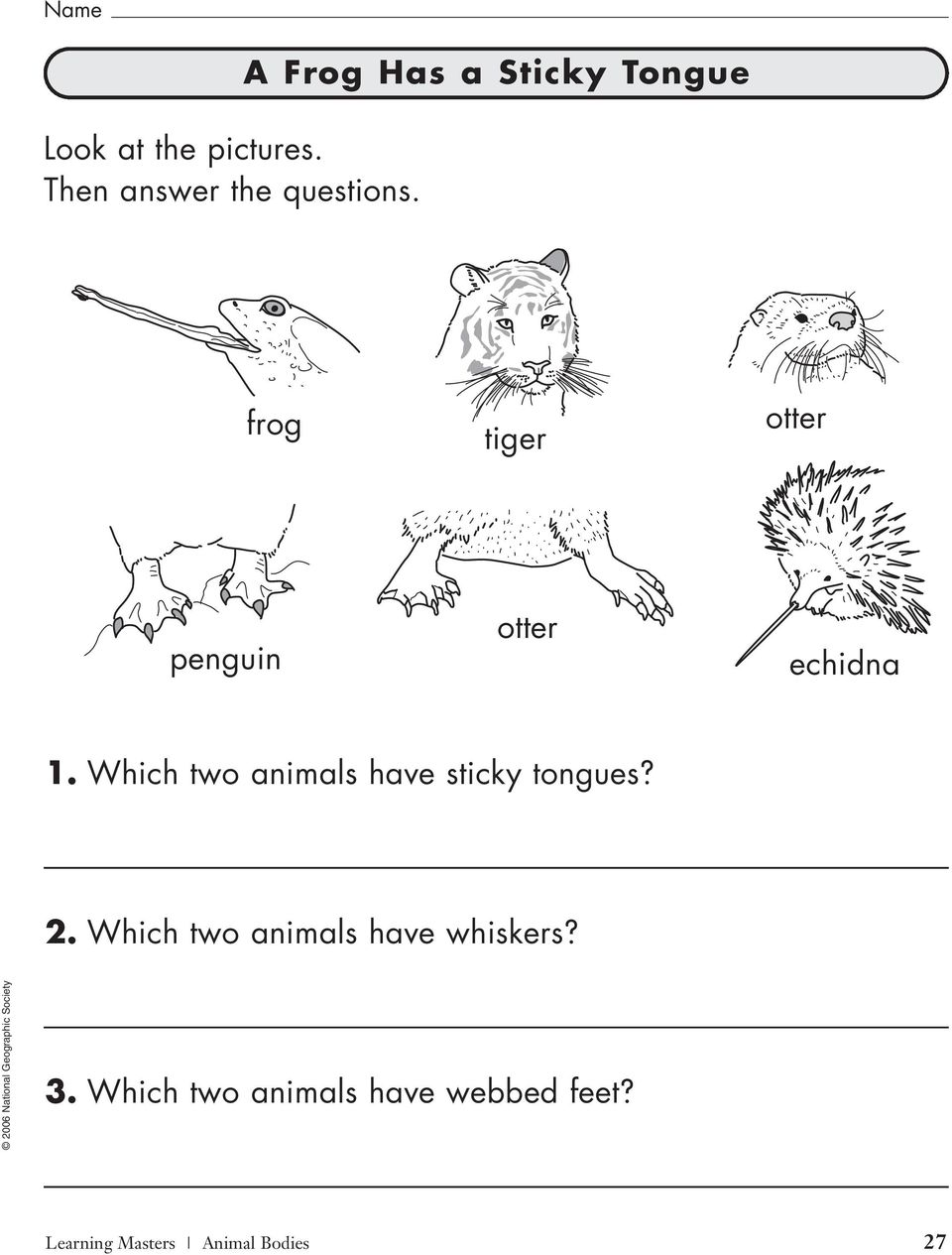 1. Which two animals have sticky tongues? 2.