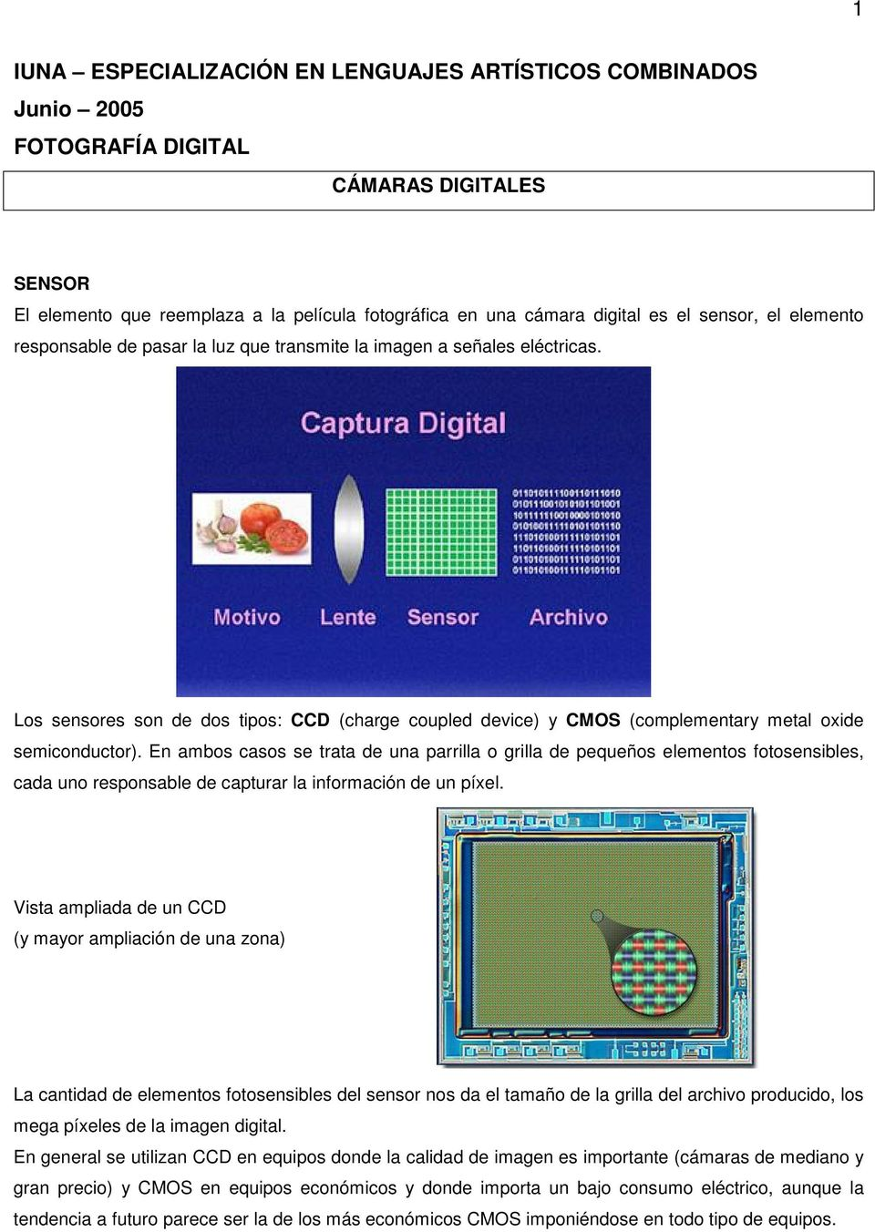 Los sensores son de dos tipos: CCD (charge coupled device) y CMOS (complementary metal oxide semiconductor).
