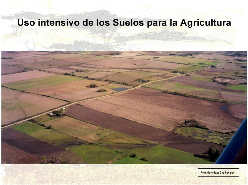 Agricultura Foto