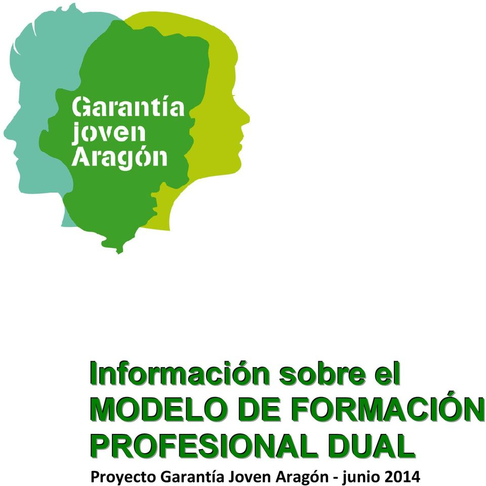 PROFESIONAL DUAL Proyecto