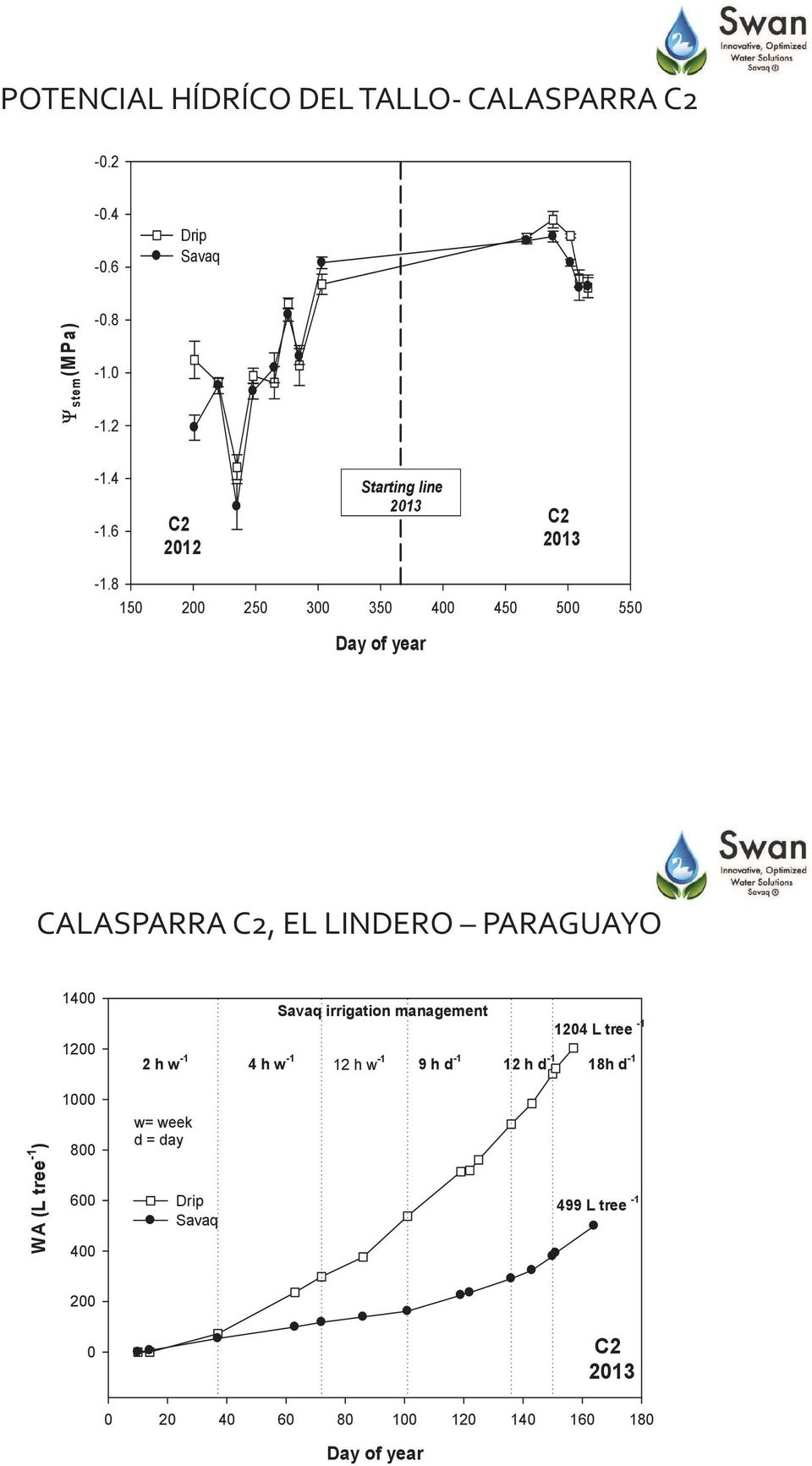 8 150 200 250 300 350 400 450 500 550 Day of year CALASPARRA C2, EL LINDERO PARAGUAYO 1400 1200 Savaq irrigation