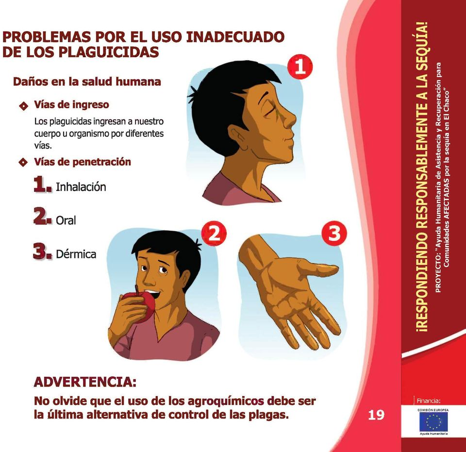 vías. Vías de penetración Inhalación Oral Dérmica ADVERTENCIA: No olvide que el