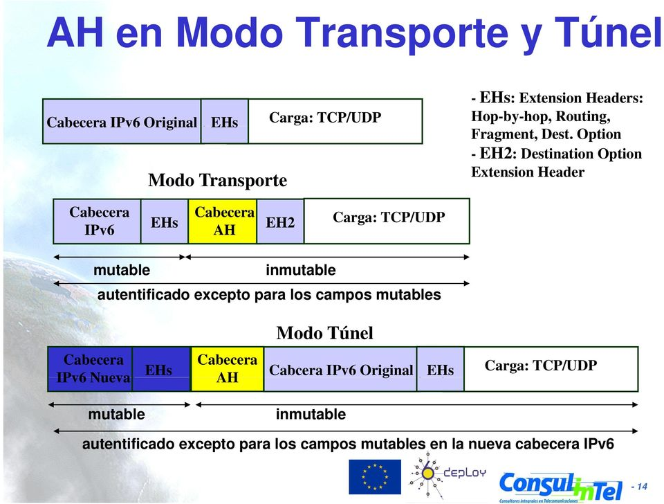 Option - EH2: Destination Option Extension Header Cabecera IPv6 Cabecera EHs AH EH2 Carga: TCP/UDP mutable inmutable