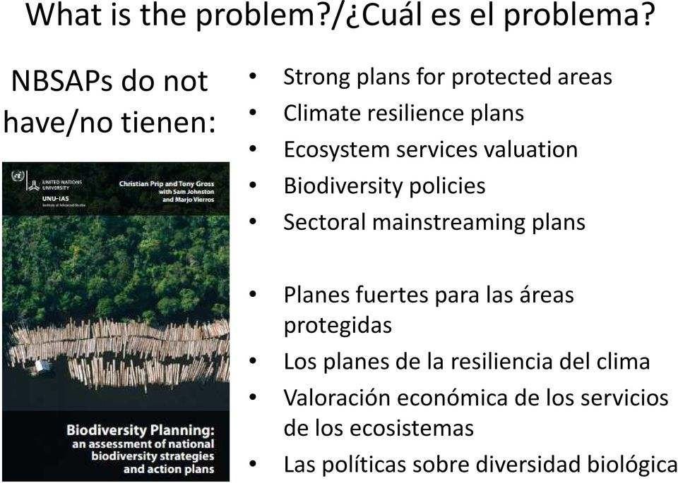 Ecosystem services valuation Biodiversity policies Sectoral mainstreaming plans Planes fuertes