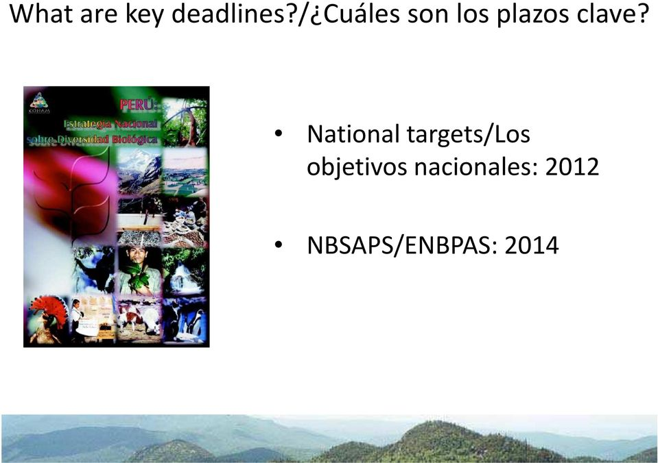 National targets/los objetivos