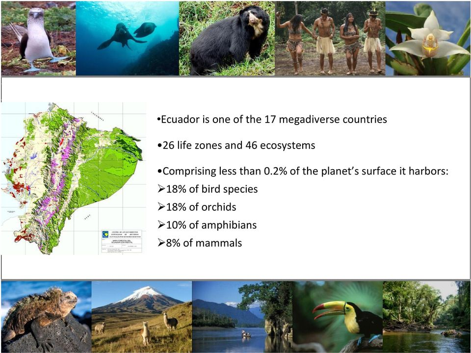 2% of the planet s surface it harbors: 18% of bird