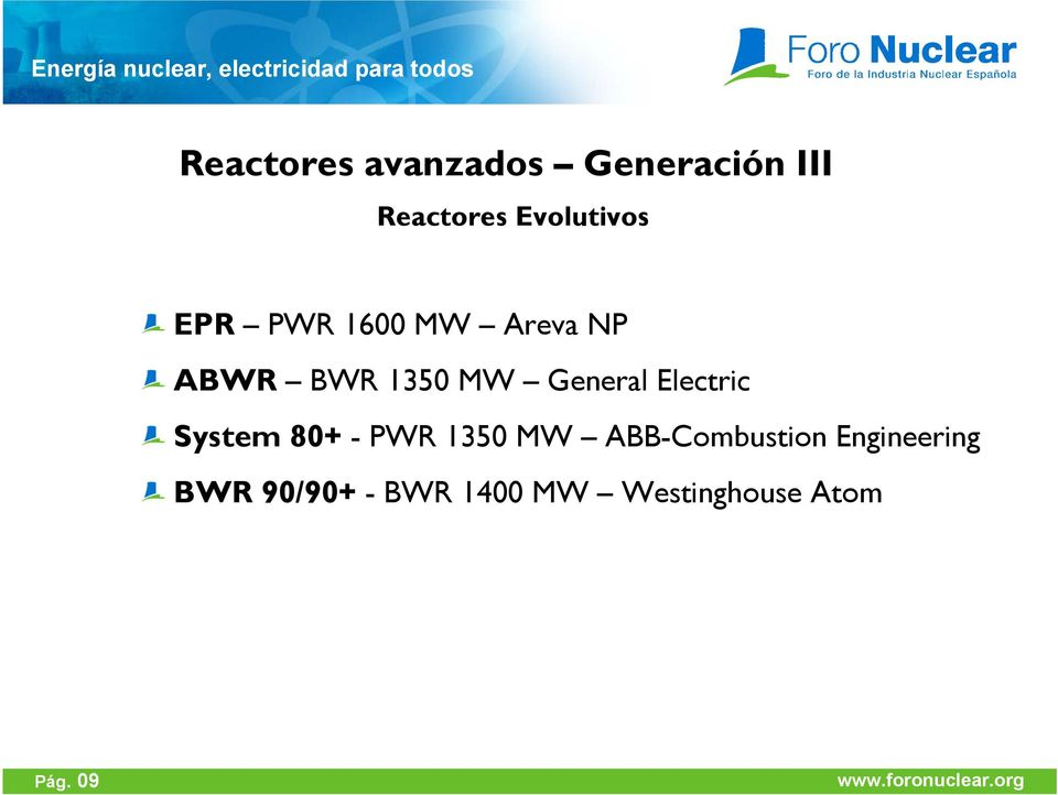General Electric System 80+ - PWR 1350 MW