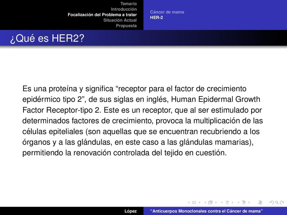 en inglés, Human Epidermal Growth Factor Receptor-tipo 2.