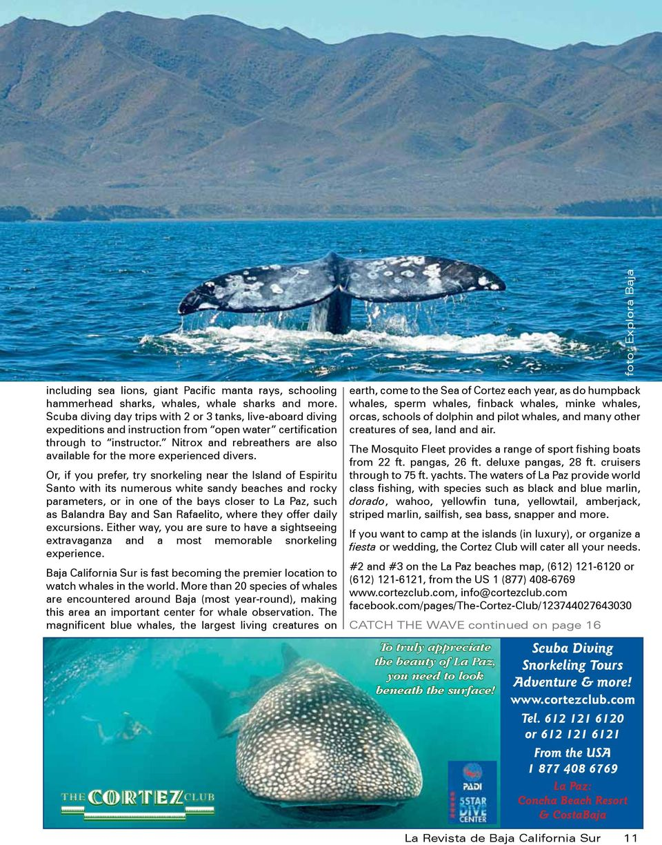 ournal del pacifico Baja Fun In and On The Water Battle of the Baja ...